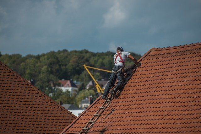 Roof painters Hamilton